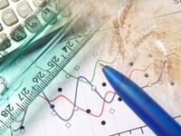 Key to Real Portfolio Growth