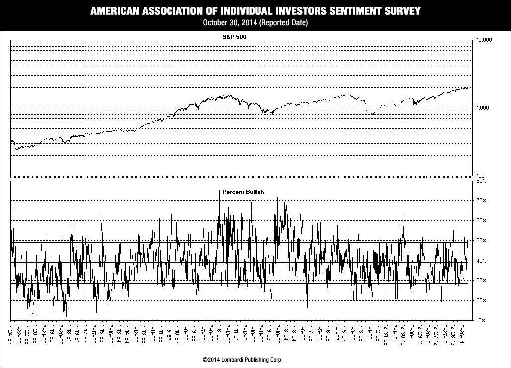 American Association Of Individual Investors Sentiment Survey - U-S Stock Market Crash 2015