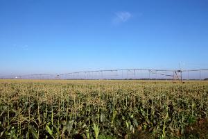 American Farmland IPO