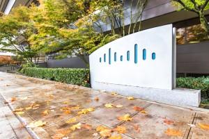 Cisco stock