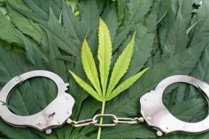 Marijuana Stock