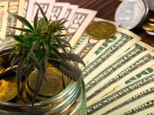 Millionaire Marijuana Stock