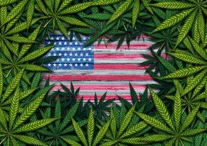 Senator McConnell us marijuana legalization