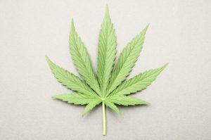 marijuana recovery april
