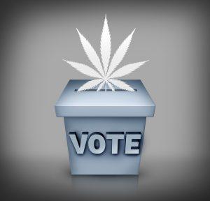 marijuana news today 5 june