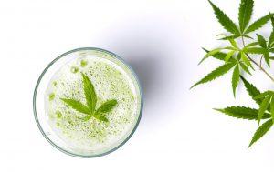marijuana news today 29 august