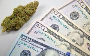 Aurora Cannabis Stock