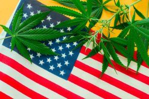 U.S. Marijuana Legalization: States Where Marijuana is Legal 2020