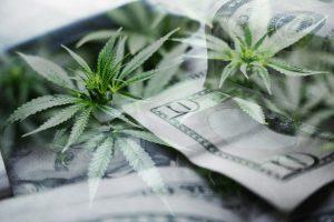 Constellation Brands, Inc.: Is STZ Stock a Marijuana Income Play?