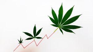 Cronos Group Inc: Up 45% Already, More Profits to Come?