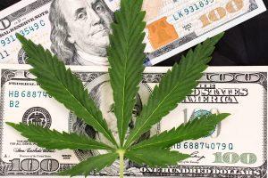 Marijuana News Today: Pot Spurs Job Growth, Helps Speed Along U.S. Legalization