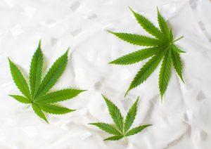 U.S. Cannabis Stocks Set to Profit Off Illinois Legalization