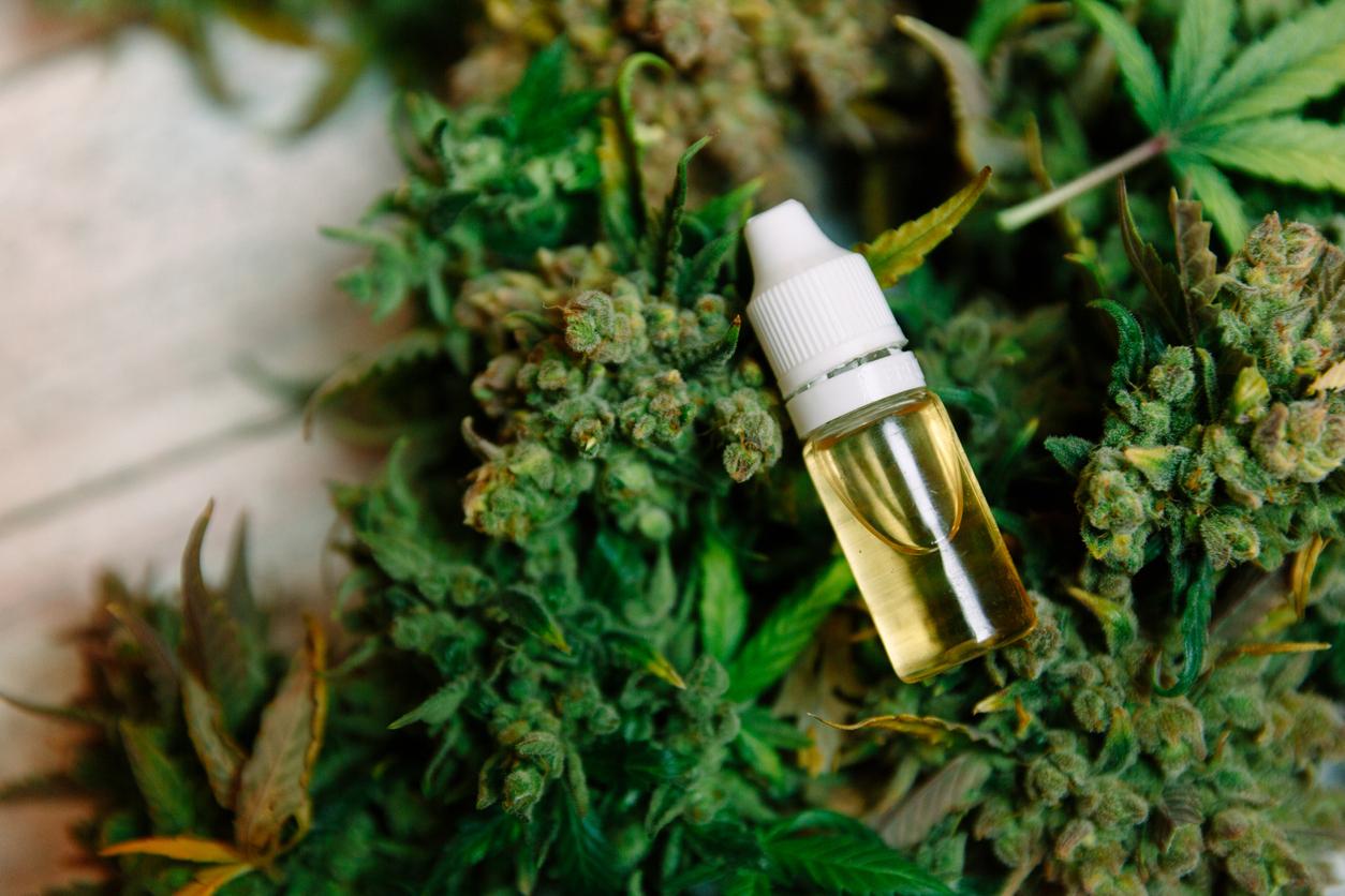 Марихуана обезболивающее выписывают ли в россии марихуану