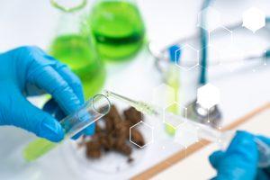 Zynerba Pharmaceuticals Inc CBD Biotech Stock Up 355% In 2019