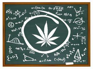 Marijuana Stocks Shouldn't Be so Focused on Profits Here's Why