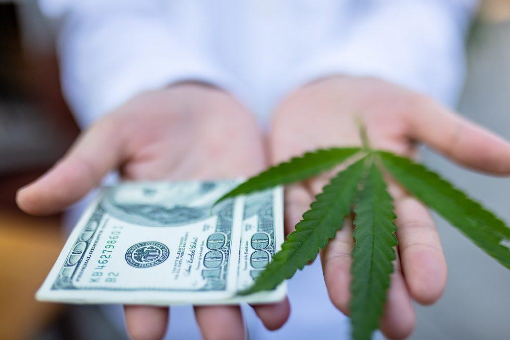 If Marijuana Stocks Become Meme Stocks, Are 1,000% Gains Possible?