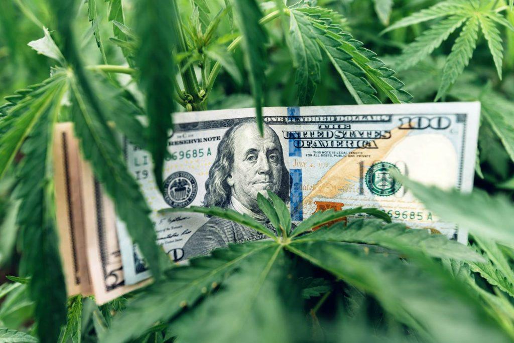 These 2 Marijuana Stocks Could Win Big if Germany Legalizes Pot